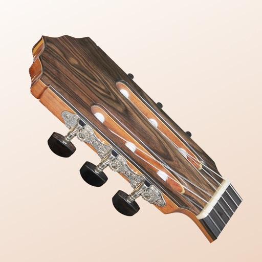 Dybos Guitar Tuner