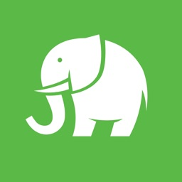 Elephant Foot Stamp