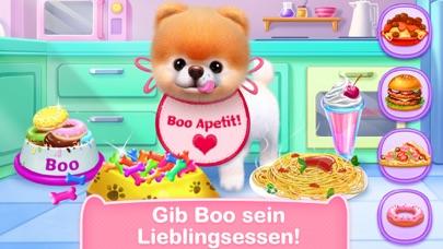 Boo: der süßeste Hund der WeltScreenshot von 3