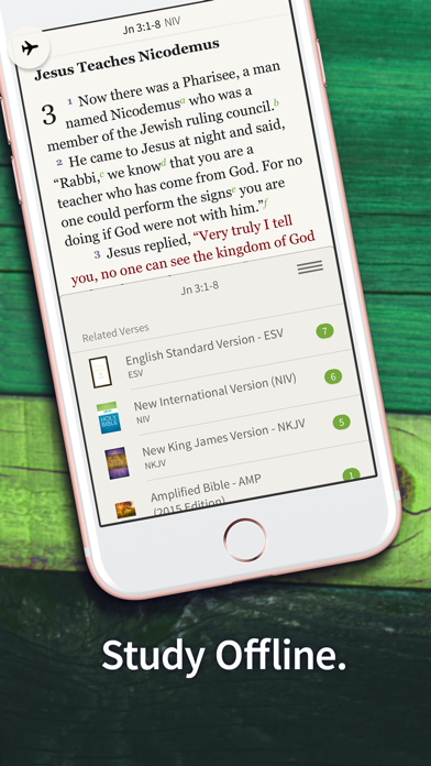 Bible App by Olive Treeのおすすめ画像7