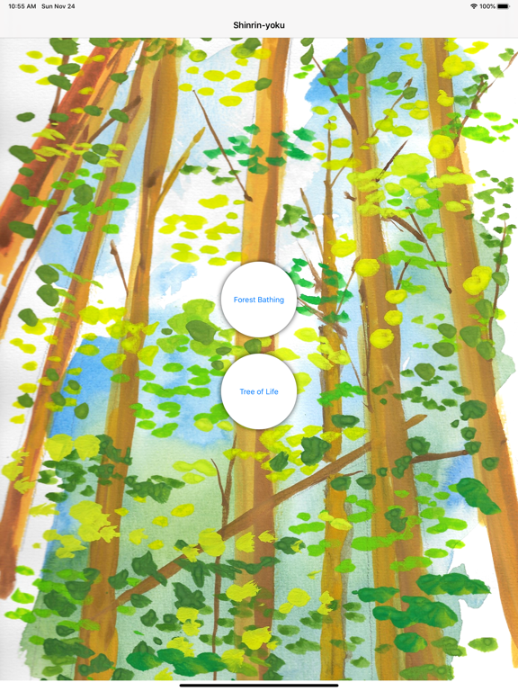 Shinrin-yoku - Forest Bathing screenshot 11