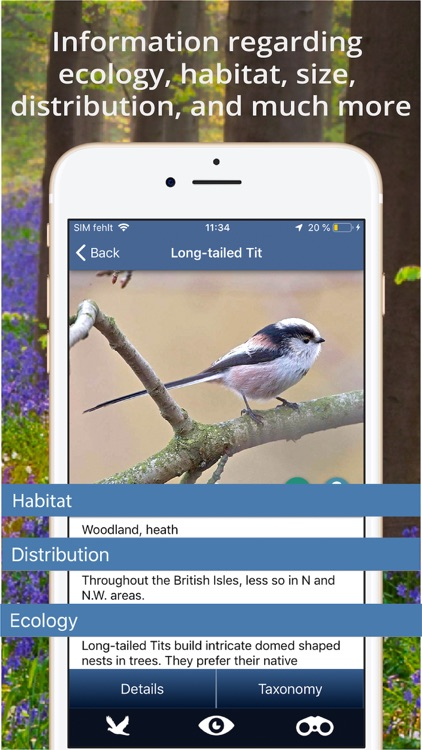 Bird Id - British Isles birds screenshot-5