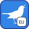 BirdSounds Europe - BirdingApps