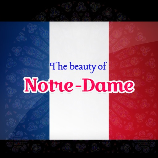The Beauty of Notre-Dame Paris