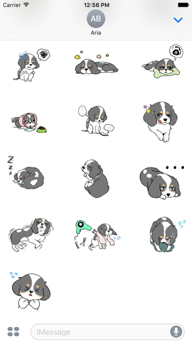 Adorable Cavalier Dog Sticker app image