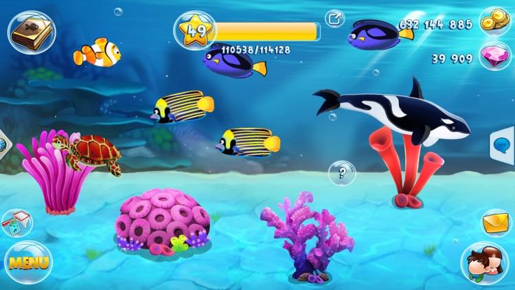 Fish Paradise - Aquarium Farm