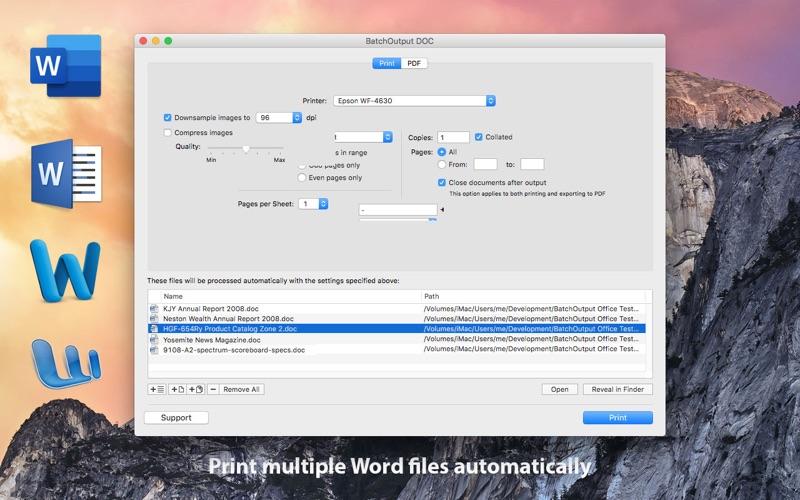 BatchOutput DOC for Word Screenshots