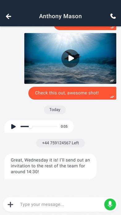 SaltIM screenshot two