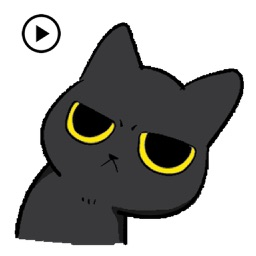Animated Grumpy Black Cat