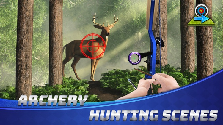 Archery Champ - Bow&Arrow King screenshot-4