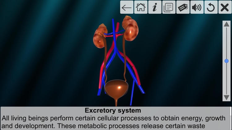 AR Incredible human body screenshot-5