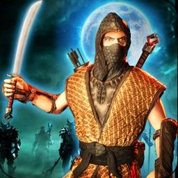 Shadow Ninja Warrior Assassin
