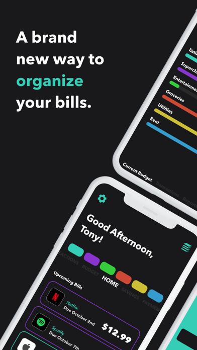 Chromabill: Bill Track, Budget