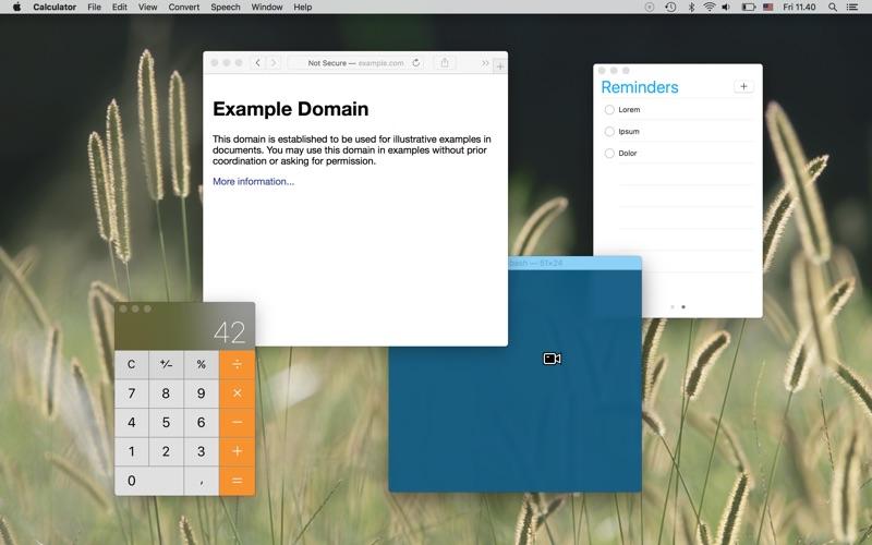 Window Recorder скриншот программы 2