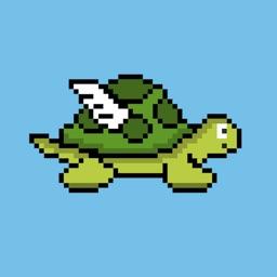 Jumpy Turtle