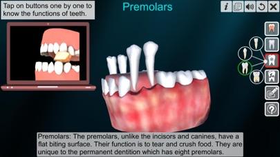 Incredible Human Teeth screenshot 4