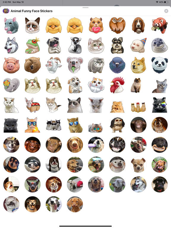Animal Funny Face Stickers screenshot 4
