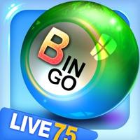 Codes for Bingo City 75: Bingo & Slots Hack