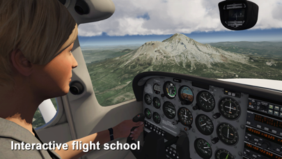 Aerofly FS 2020 screenshot 2