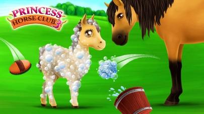 Princess Horse Club 3 screenshot four