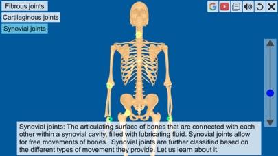 Joints: The Human Levers screenshot 3