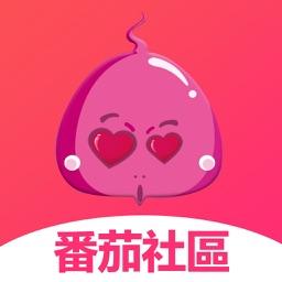 番茄社区-火爆视频交友社区