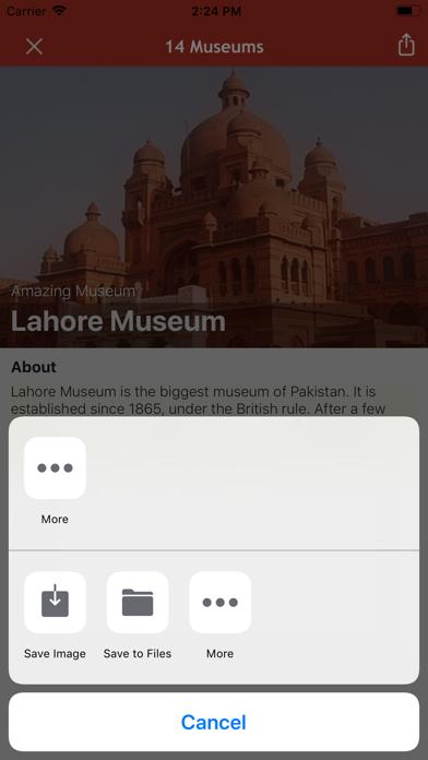 Amazing Museums screenshot 8