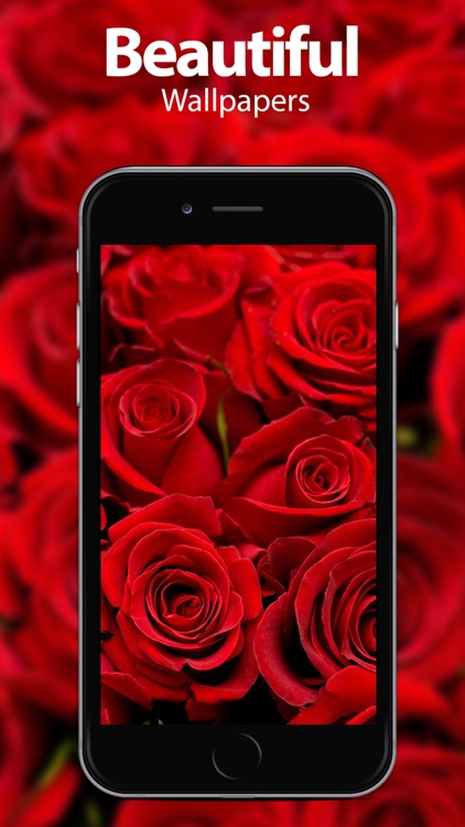 Flower Wallpapers & Themes
