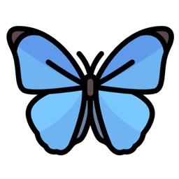 ButterfliesMi
