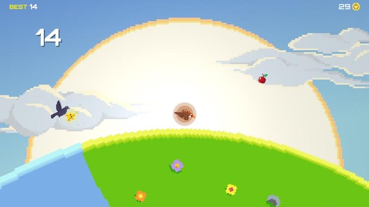Bird Adventure screenshot-6