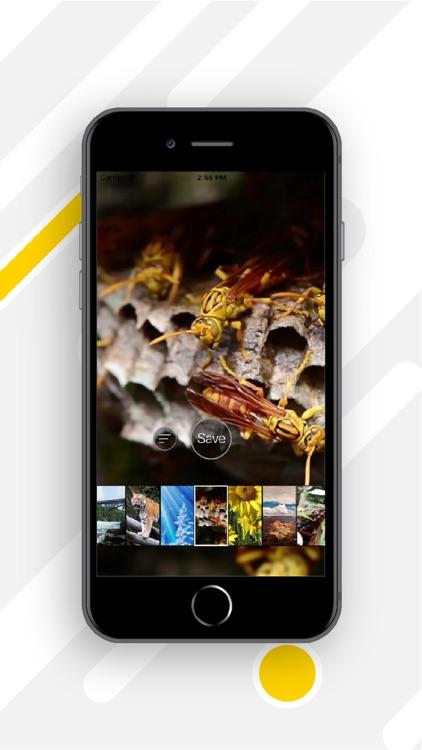 4K HD Live Wallpapers screenshot-3