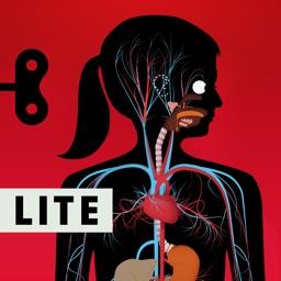The Human Body Lite