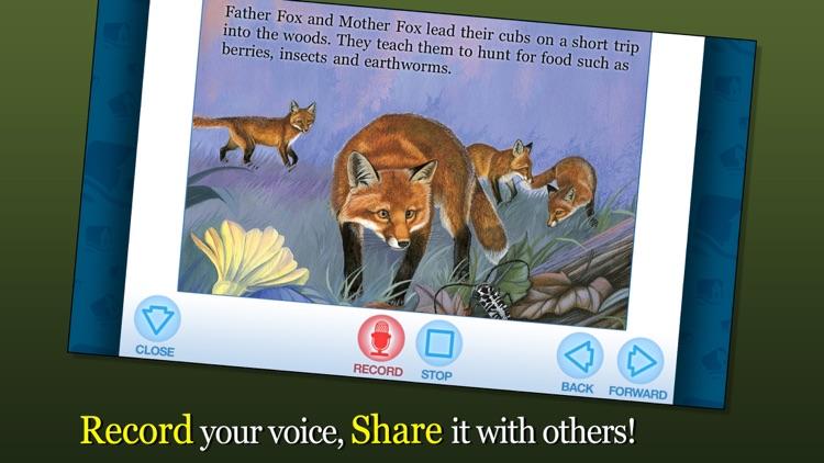 Red Fox at Hickory Lane screenshot-3