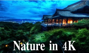 Nature in 4k: NatureScapes