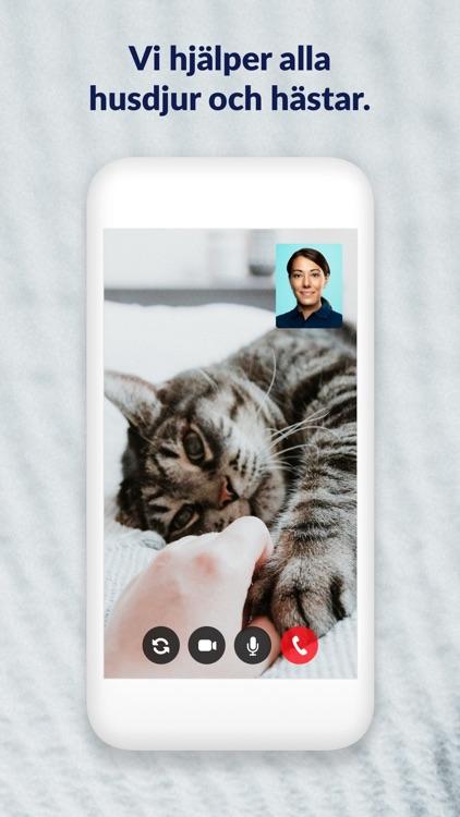 FirstVet - Veterinär i mobilen screenshot-4