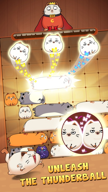 Haru Cats: Slide Block Puzzle screenshot-3