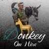 Donkey On Hire Provider
