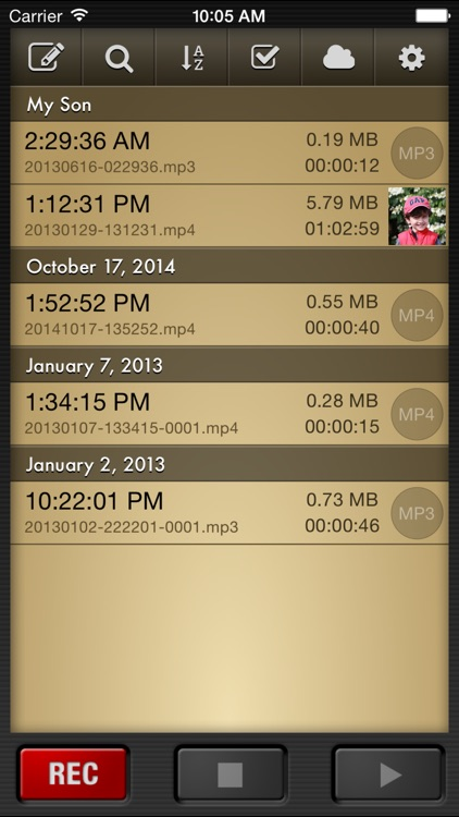 Voice Record Pro screenshot-2