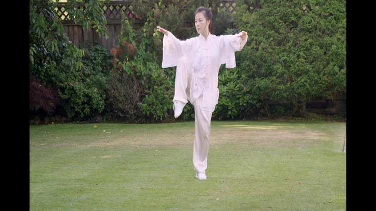 Tai Chi for Beginners 48 Form