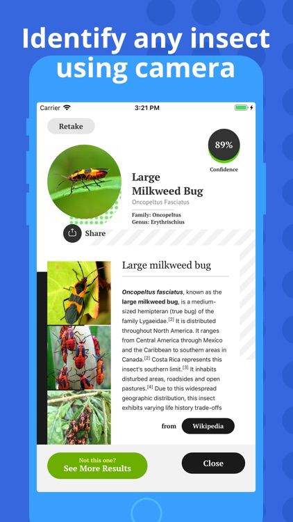 Insect Identification screenshot-1