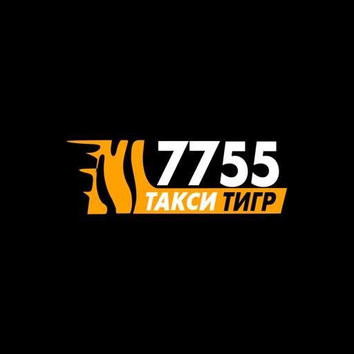Taxi Tiger in Kiev - 7755