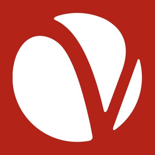 Voiance Interpreter image