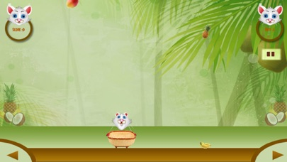 Sweet Fruits Collector app image