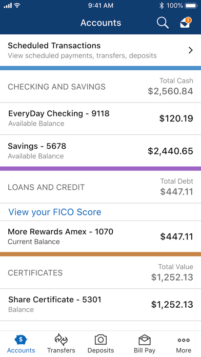 Navy Federal Credit Union review screenshots
