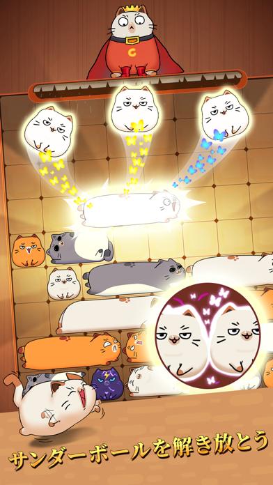 Haru Cats: スライド ブロック パズルのおすすめ画像6