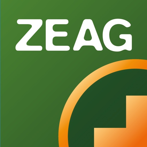 ZEAG carsharing