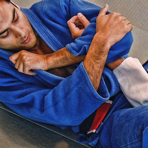 BJJ Blue Requirements 1.0