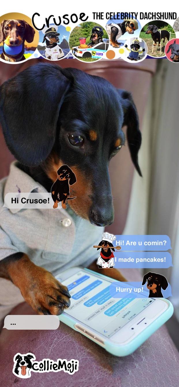 CrusoeMoji - Dachshund sticker | AppFollow