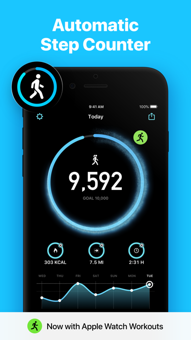 StepsApp Pedometer wiki review and how to guide