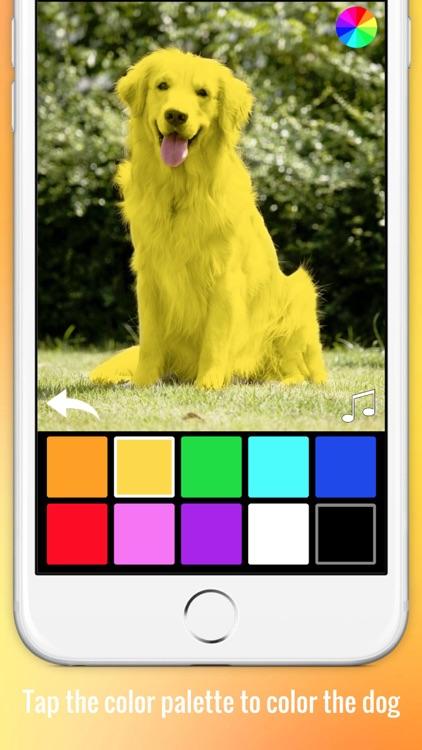 Color Zoo Lite